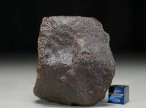 JaH091 (201.1 gram)