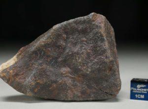 JaH091 (134.0 gram)