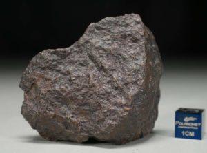 JaH091 (69.4 gram)