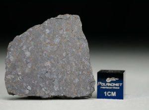 NWA 12183 (6.31 gram)