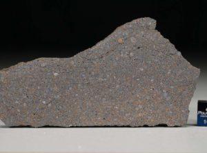 NWA 5498 (19.17 gram)