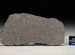 NWA 5498 (18.39 gram)