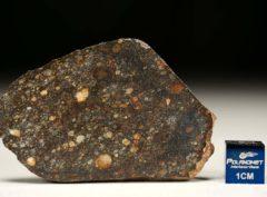 NWA 8303 (15.27 gram)