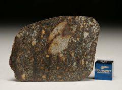 NWA 8303 (20.50 gram)