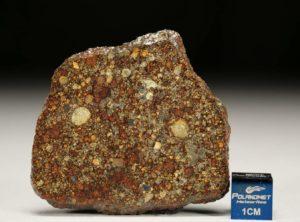 NWA 7814 (14.00 gram)