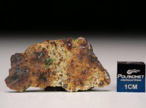 NWA 8251 (2.64 gram)