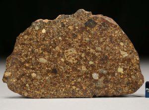 NWA 4560 (53 gram)