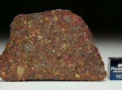 NWA 11385 (10.14 gram)