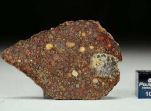 NWA 11385 (8.06 gram)
