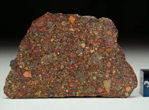 NWA 11385 (8.85 gram)