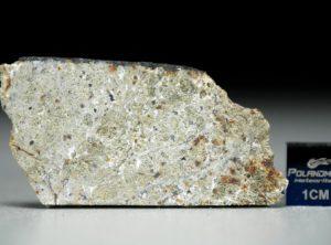 NWA 8321 (7.26 gram)