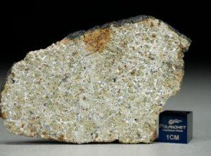NWA 8325 (13.14 gram)