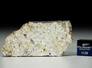 NWA 8321 (5.66 gram)