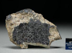 NWA 8321 (28.05 gram)