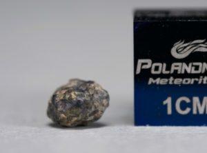 NWA 5219 (0.161 gram)
