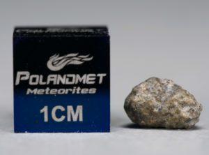 NWA 5219 (0.311 gram)