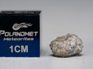 NWA 5219 (0.380 gram)