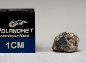 NWA 5219 (0.342 gram)