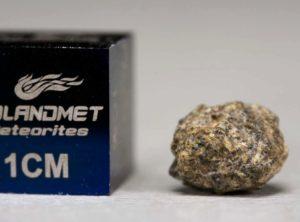 NWA 5219 (0.389 gram)