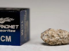 NWA 5219 (0.362 gram)