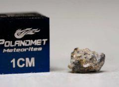 NWA 5219 (0.183 gram)