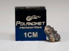 NWA 5219 (0.123 gram)
