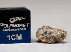 NWA 5219 (0.484 gram)