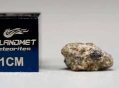NWA 5219 (0.402 gram)