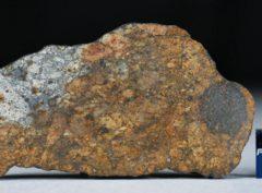 NWA 11388 (13.97 gram)