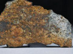 NWA 11388 (16.58 gram)