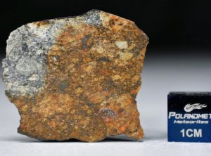 NWA 11388 (6.81 gram)