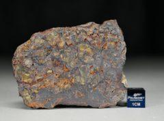 NWA 7853 (106.58 gram)