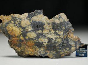 NWA 13166 (37.59 gram)