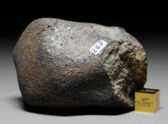 GAO-GUENIE (265 gram)