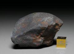 GAO-GUENIE (131.8 gram)