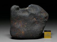 GAO-GUENIE (171 gram)
