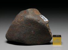 GAO-GUENIE (130.8 gram)