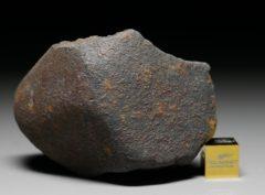 GAO-GUENIE (144 gram)