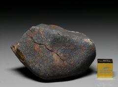 GAO-GUENIE (114.8 gram)