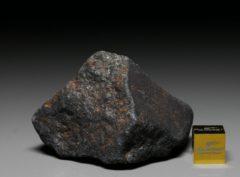 GAO-GUENIE (91.7 gram)