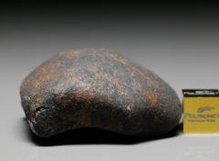 GAO-GUENIE (61.4 gram)