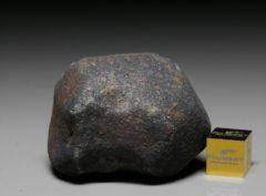 GAO-GUENIE (74.3 gram)