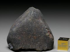 GAO-GUENIE (65.3 gram)