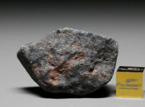 GAO-GUENIE (30.8 gram)