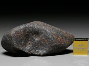 GAO-GUENIE (33.6 gram)