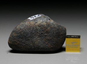 GAO-GUENIE (47.8 gram)