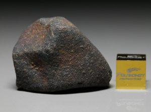 GAO-GUENIE (29.2 gram)