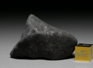 GAO-GUENIE (44.2 gram)