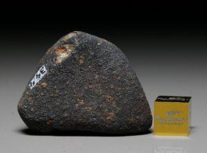GAO-GUENIE (34.4 gram)