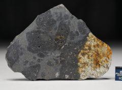 MC176 (34.12 gram)
